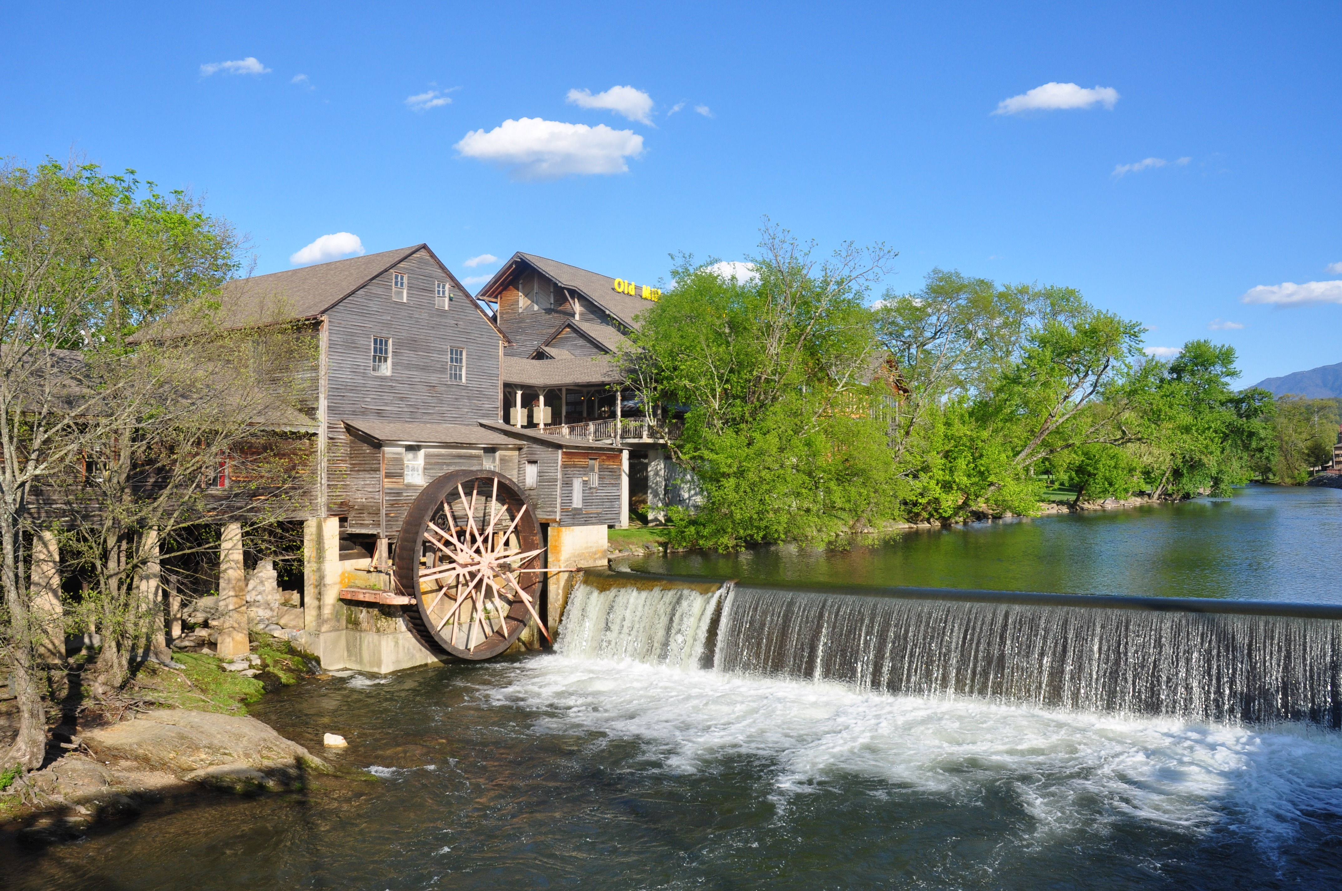 4 Family Attractions to Visit That are Within 10 Minutes of Our Pigeon Forge Hotel