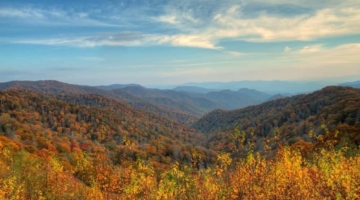 4 Things to Do During Your Fall Vacation at Our Pigeon Forge Tennessee Hotel