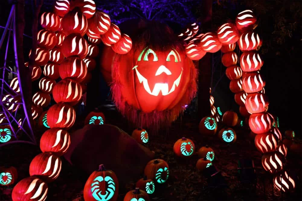 6 Fun Things You Can Experience at the Dollywood Harvest Festival